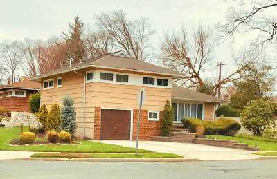 East Meadow Single Family Home For Sale: 1409 Rose Ln