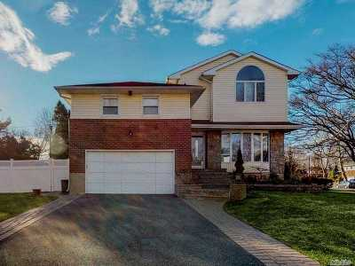Plainview Single Family Home For Sale: 10 Felice Ln