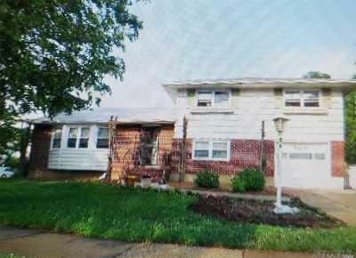 Hempstead Single Family Home For Sale: 36 Eldridge Pl
