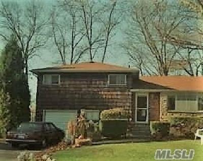 N. Babylon Single Family Home For Sale: 510 Thorn St