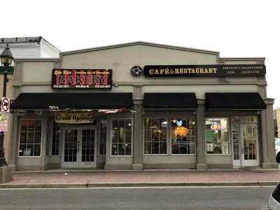Freeport Commercial For Sale: 42-46 S Main St