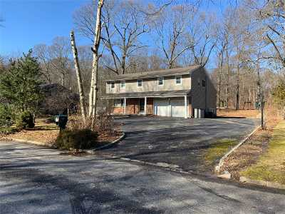 Dix Hills Single Family Home For Sale: 27 Randolph Dr