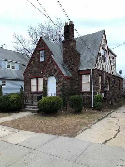 W. Hempstead Single Family Home For Sale: 163 Ivy St