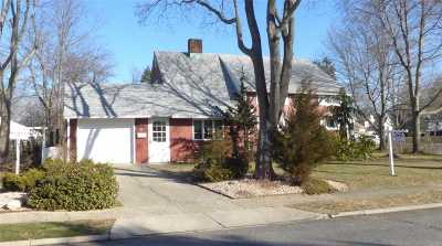 Westbury Single Family Home For Sale: 93 Page Ln