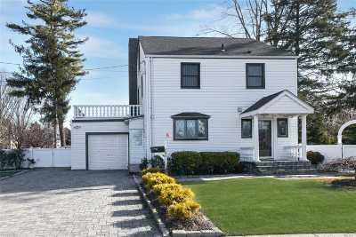 Westbury Single Family Home For Sale: 404 Cambridge Ave