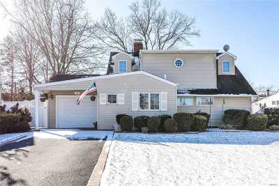 Westbury Single Family Home For Sale: 28 Hearth Ln