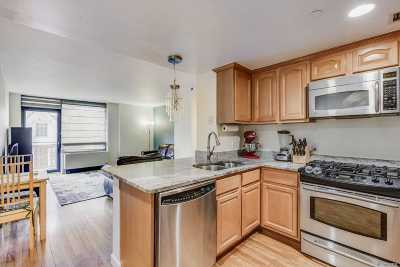 Kew Gardens Condo/Townhouse For Sale: 116-24 Grosvenor Ln #3A