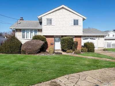 East Meadow Single Family Home For Sale: 2621 Dianne Ct.
