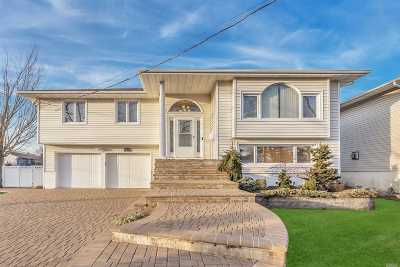 Bellmore Single Family Home For Sale: 2455 Randy Ln