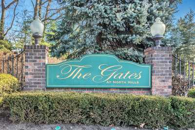 New Hyde Park Condo/Townhouse For Sale: 54 Windsor Gate Dr