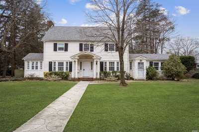 Hempstead Single Family Home For Sale: 111 Cathedral Ave