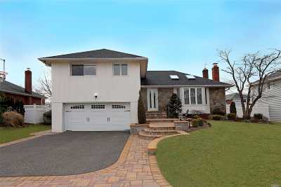 Syosset Single Family Home For Sale: 7 Mesa Rd