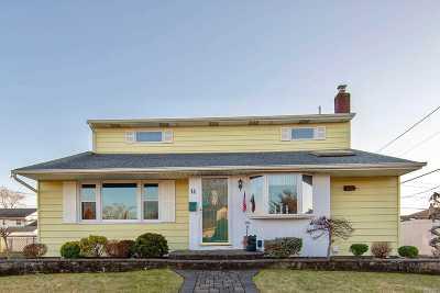 Hicksville Single Family Home For Sale: 14 Elwood Ave