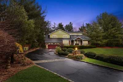 Syosset Single Family Home For Sale: 9 Townsend Dr