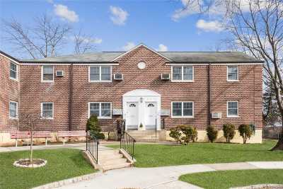 Little Neck Co-op For Sale: 249-33 64th Ave #Lower