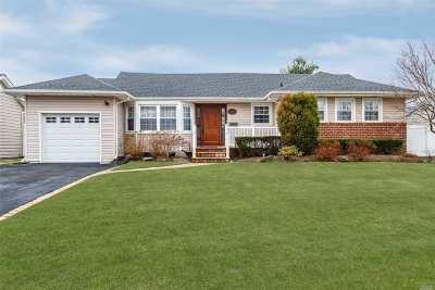 Wantagh Single Family Home For Sale: 3058 Morgan Dr