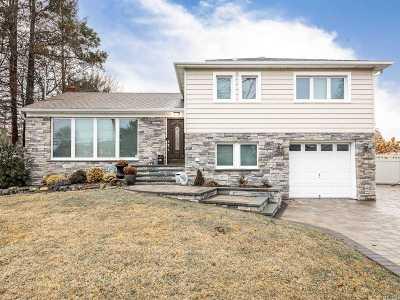 Hicksville Single Family Home For Sale: 20 Tudor Rd