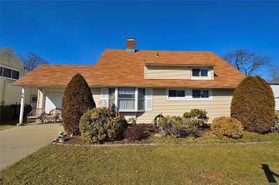 Westbury Single Family Home For Sale: 217 Cypress Ln