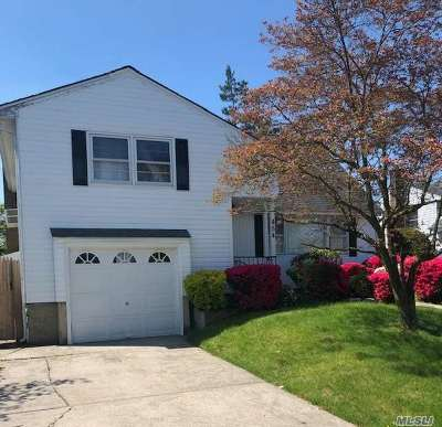 Massapequa Single Family Home For Sale: 454 N Queens Ave