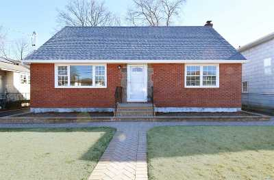 Carle Place, Westbury Single Family Home For Sale: 204 Brook St