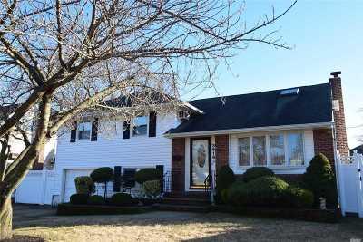 Wantagh Single Family Home For Sale: 3616 Carlisle Rd