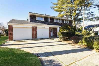 Plainview Single Family Home For Sale: 41 Richfield St