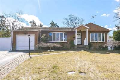 Syosset Single Family Home For Sale: 24 Renee Rd