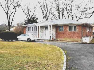Plainview Single Family Home For Sale: 42 Cornell Dr