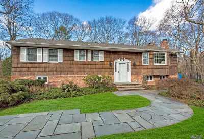 Dix Hills Single Family Home For Sale: 4 Lucille Ln