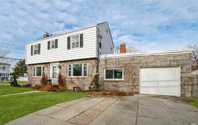 Malverne Single Family Home For Sale: 216 Franklin Ave