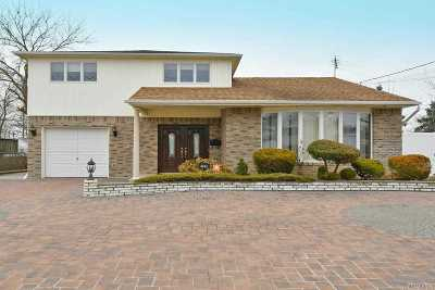 Bellmore Single Family Home For Sale: 2541 Park Pl