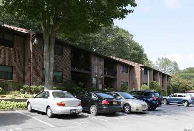 Smithtown Rental For Rent: 44 Route 25a #307
