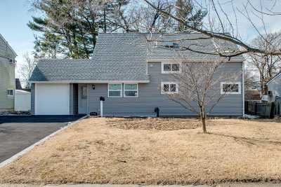 Wantagh Single Family Home For Sale: 274 Twin Ln