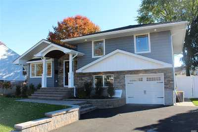 Plainview Single Family Home For Sale: 10 Lane Ave