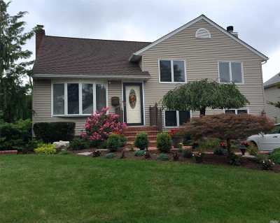 Bethpage Single Family Home For Sale: 10 Spencer Dr