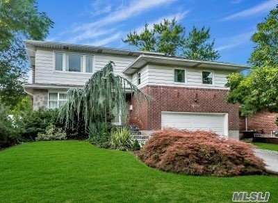 Plainview Single Family Home For Sale: 18 Theodore Dr