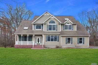 Dix Hills Single Family Home For Sale: 108 Dix Hwy