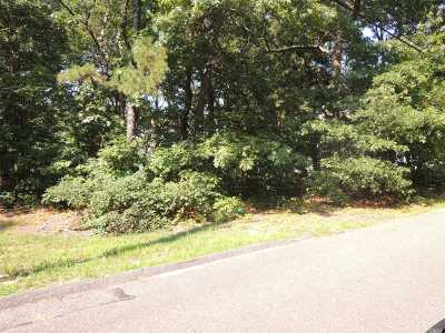 Centereach Residential Lots & Land For Sale: 13 Booth St