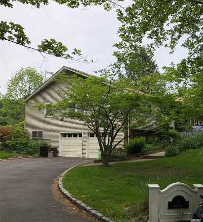 Dix Hills Single Family Home For Sale: 1 June Ln
