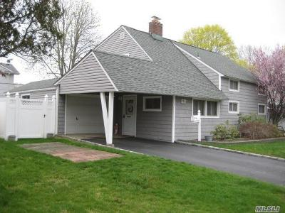 Hicksville Single Family Home For Sale: 127 Brittle Ln