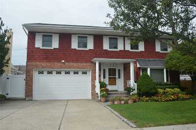 East Meadow Single Family Home For Sale: 141 Melanie Dr
