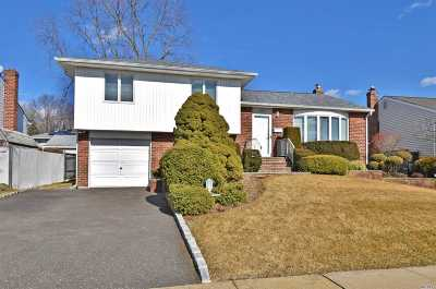 Wantagh Single Family Home For Sale: 1329 Jonathan Ln