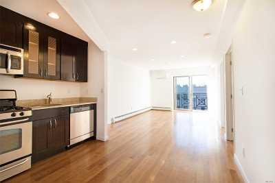 Astoria, Sunnyside, Long Island City Condo/Townhouse For Sale: 25-47 23 St #4F