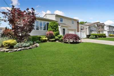 Bellmore Single Family Home For Sale: 3006 Susan Rd