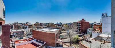 Astoria, Sunnyside, Long Island City Condo/Townhouse For Sale: 28-20 Astoria Blvd #Ph1