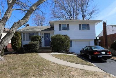 Massapequa Park Single Family Home For Sale: 459 Philadelphia Ave