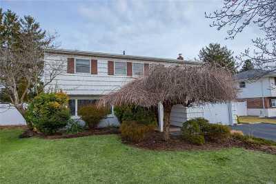 Commack Single Family Home For Sale: 11 Crabapple Ln