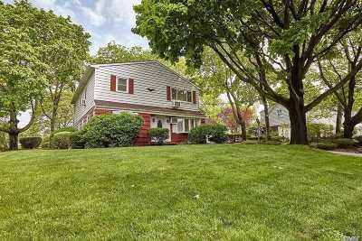 Massapequa Single Family Home For Sale: 245 Rhode Island Ave
