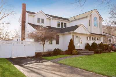 East Meadow Single Family Home For Sale: 574 Chestnut Ln