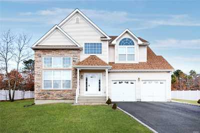 Medford Single Family Home For Sale: 17 Audobon St